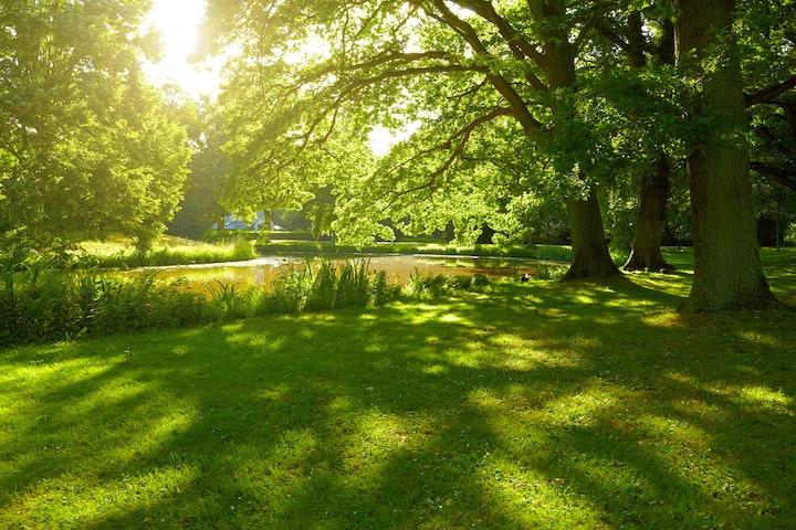 Wyndham Garden Stillwater | Stillwater Hotels, OK 74075
